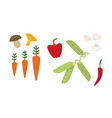 flat set different vegetables fresh vector image
