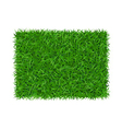Green grass background rectangle vector image