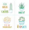 linear cacti and hand-written lettering vector image