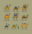 camels collection sketch for your design vector image vector image