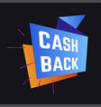 economy cash back service guarantee shopping and vector image vector image