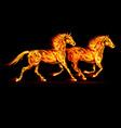Fair Horse Run2 04 vector image vector image