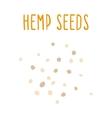 Hemp seeds vector image vector image