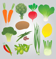 Organic Vegetables Collection vector image vector image