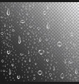 rain drops or steam shower realistic water drops vector image