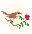 Small bird on the twig rose vintage vector image vector image