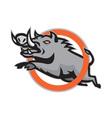 Wild Pig Boar Razorback Jumping Circle vector image vector image
