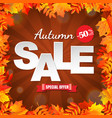 autumn sale with leaves border vector image vector image
