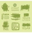 Bio Food Lables Set vector image vector image