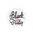 Black Friday sale - stickers badges has written vector image vector image