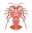 Decorative isolated crayfish