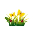 garden flowers and butterflies vector image vector image