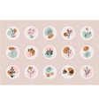 set abstract floral compositions boho vector image