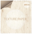 texture paper curl vitage style background vector image vector image
