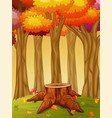 tree stump and mushroom in the autumn forest vector image