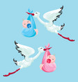 set of images stork with boy and girl elements vector image