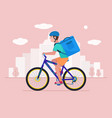 courier on a bicycle delivers a package with food vector image