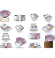 full set of five hundred euros banknotes vector image vector image