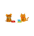 funny dog and cat eating food cute domestic pet vector image vector image