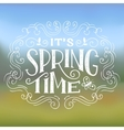 Its Spring Time typographic design vector image