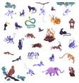 jungle animals icon set vector image vector image