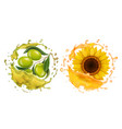 olive and sunflower in oil realistic splashes vector image vector image
