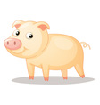 piggy vector image vector image