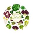 Salads poster of green leafy vegetables