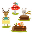 set isolated forest animal with frame vector image vector image