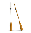 Two wooden oars vector image vector image
