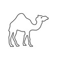 cartoon camel icon vector image