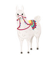 cute llama wearing decorative saddle with patterns vector image vector image
