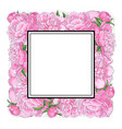 hand-drawn peony flowers forming square frame vector image vector image
