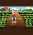 little boy working in a vegetable farm vector image vector image