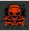 Pirate Skull and crossbones - isolated on dark vector image vector image