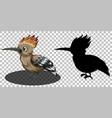 roadrunner bird cartoon character with its vector image