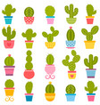 set of cactuses in the pots vector image vector image