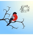 Singing bullfinch bird on a tree branch vector image
