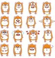 smiley hamsters vector image