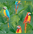tropical seamless parrot and floral summer pattern vector image vector image
