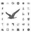 seagull icon vector image