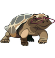 brown tortoise with glasses vector image vector image