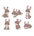 cute cartoon rabbits vector image