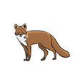 hand drawn animal fox vector image vector image