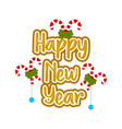 happy new year message with ornaments vector image