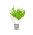 Lamp with green grass and plants inside vector image vector image