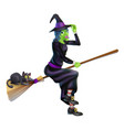 witch on broom with black cat vector image vector image