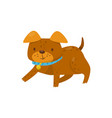 brown dog lying on the floor cute domestic pet vector image vector image
