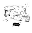camembert cheese block and triangle drawing vector image vector image