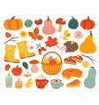 cute autumn elements fall pumpkin hedgehog vector image